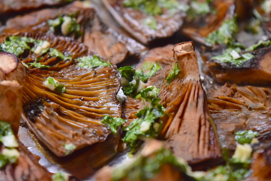 Red pine mushrooms with garlic and parsley